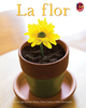 Thumb_the_flower_span_low-res_frontcover