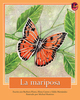 Thumb_butterfly_span__low-res_frontcover
