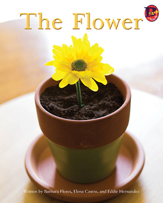 Main_the_flower_eng_low-res_frontcover