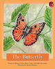 Thumb_butterfly_eng__low-res_frontcover